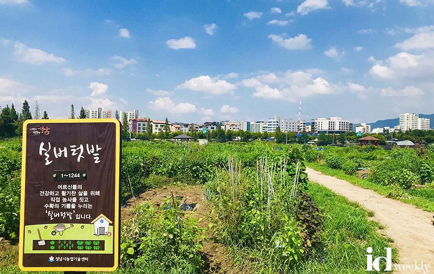 농업기술센터-성남시민농원 실버텃밭 2500명에 무료 분양.jpg